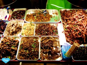 Notheastern CultureOf Eat Bug In Thailand | Love Thai Maak