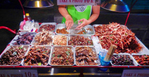 Things to do in Bangkok Insect Eating Love Thai Maak Variety Of Choices