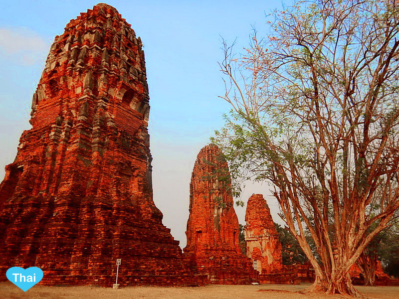 Love Thai Maak Travel To 5 Must Go Temples In Ayutthaya Wat Mahathat