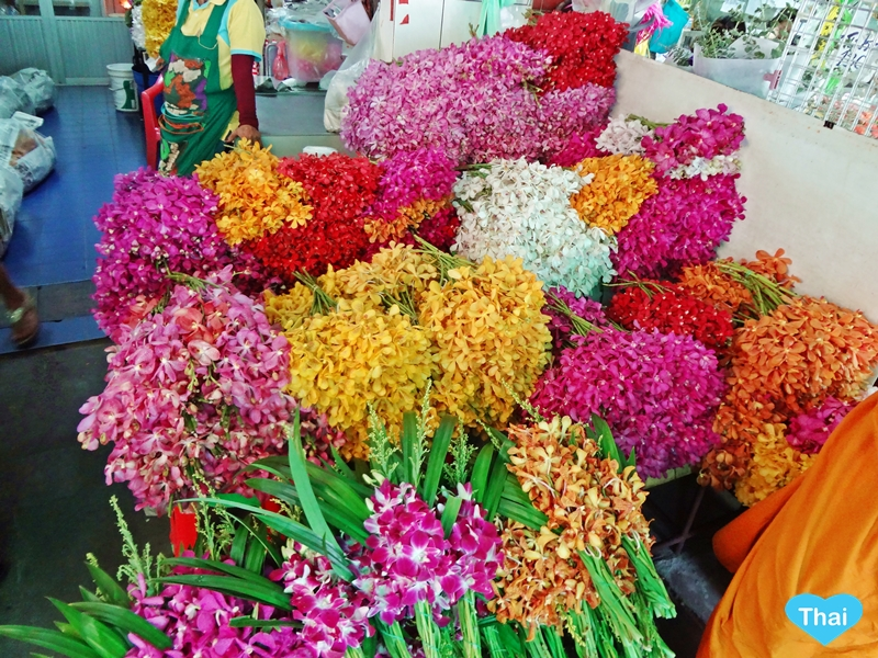 Things To Do In Thailand: Bangkok's Biggest Flower Market Pak Khlong Talat Colors of Thai Orchids